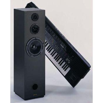 VS-LSK5929 Inbouw speaker In gebruik foto
